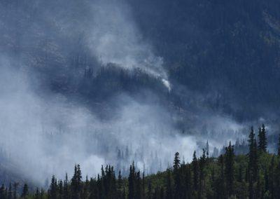 Forest fire Yukon